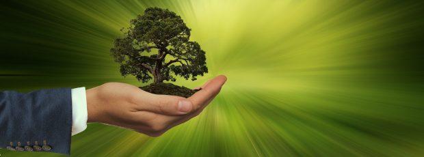 Sustentabilidade é responsabilidade de todos.  O que o varejo pode fazer?