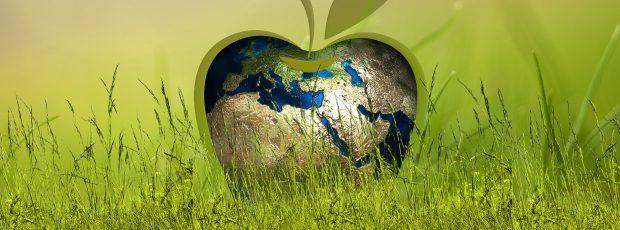 Varejistas acreditam que consumidores vão cobrar cada vez mais por sustentabilidade